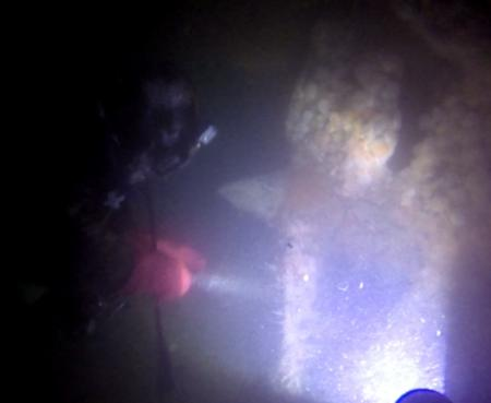 schroef2 duik4 (Termote)