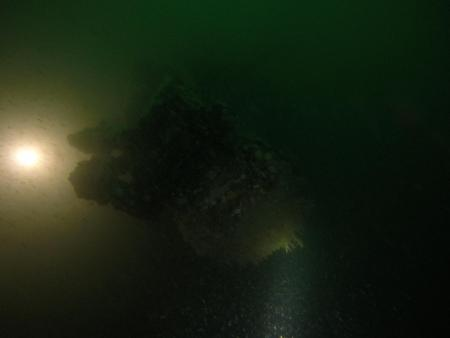 Torpedobuizen (T. Termote)